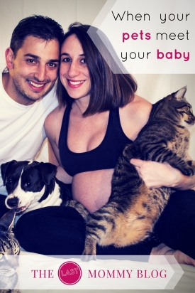 When your pets meet your baby